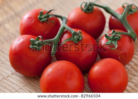branch of tomato on bamboo colander - stock photo