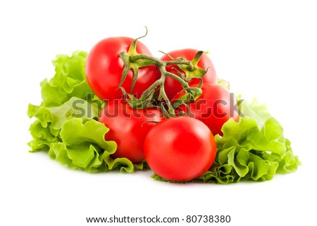 Branch of tomatoes on salad leaf isolated on white background - stock photo