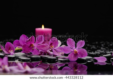 Branch orchid and candle on black stones  - stock photo