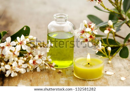 Branch spring flower, candle, massage oil