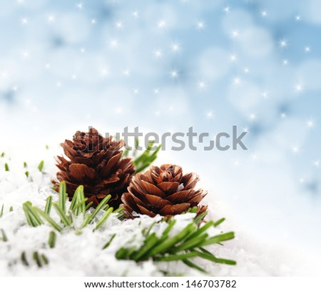 branch with cone in front of an abstract background - stock photo