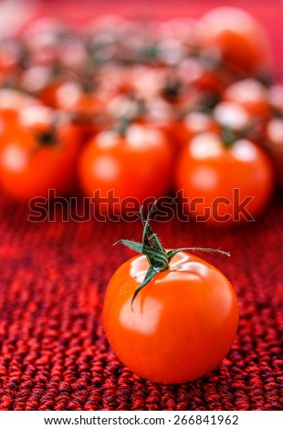 Branche of red tomatoes on tablecloth. - stock photo