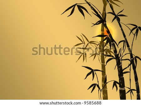 Branches of a bamboo on a background of light of the sun