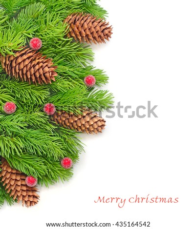 Branches of a Christmas tree with cones and red berries at the left on a white background. A Christmas background with space for the text.