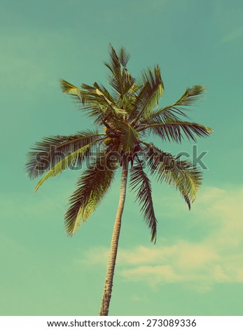 branches of coconut palm against blue sky - vintage retro style - stock photo