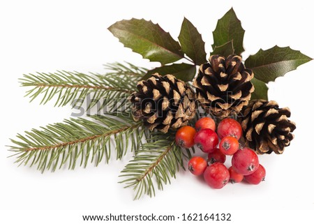 branches of holly, pine cones, mountain ash berries - stock photo