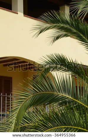 branches of palm trees in front of a yellow house - stock photo
