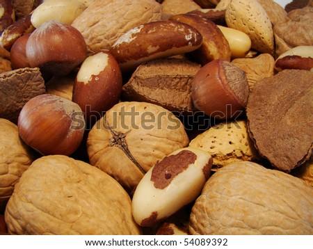 brazilian nuts - stock photo