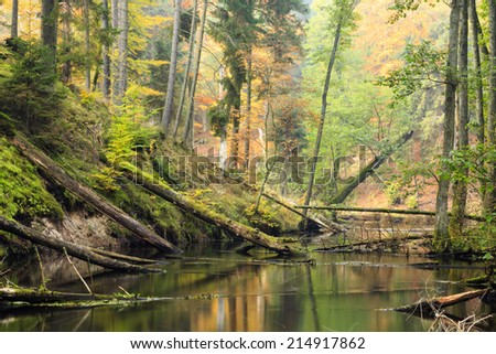 Brda river in north Poland/Autumn river - stock photo