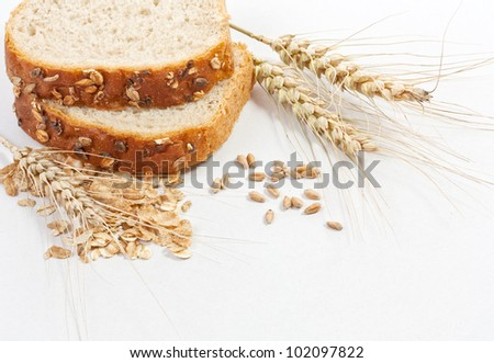 Bread and ears on white background - stock photo