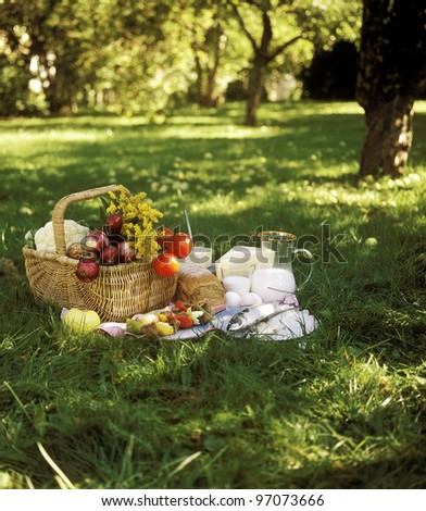 Bread, Fish and vegetables in a picnic basket - stock photo