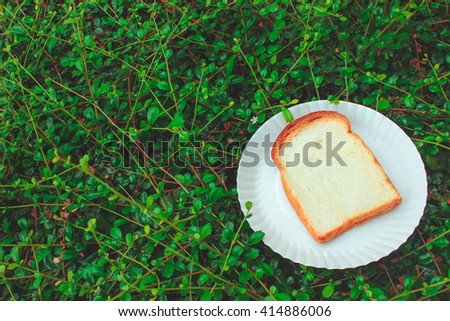 Bread on a paper plate - green leave - stock photo