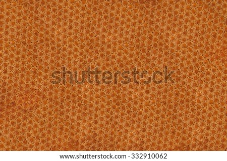 Bread texture background , seamless , full frame - stock photo