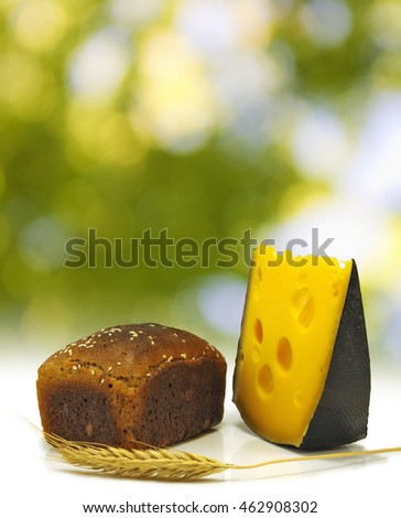 bread, wheat and cheese on green background