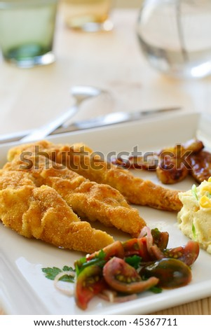 Breaded chicken breast fillet, served with tomato salad and mashed potatoes - stock photo