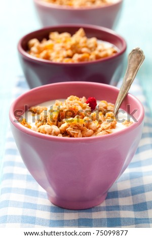 Breakfast cereal with dried berries, fruit and milk