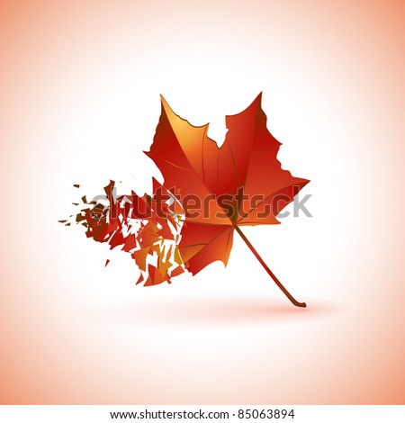 Breaking leaf icon | background.Vector version available in my gallery. - stock photo