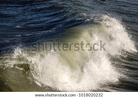 Breaking surf in the Atlantic Ocean off the Outer Banks of North Carolina, USA, for marine and environmental themes