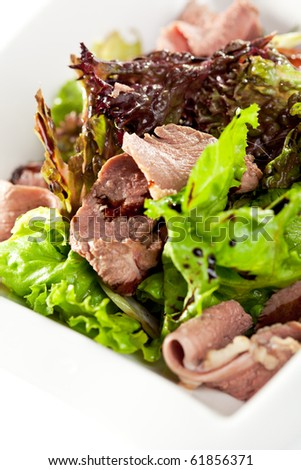 Breast of Duck Salad with Sauce