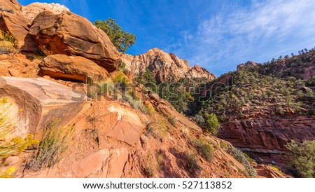 Breathtaking view of the canyon. The rays of the sun illuminate red cliffs. Zion National Park, Utah, USA
