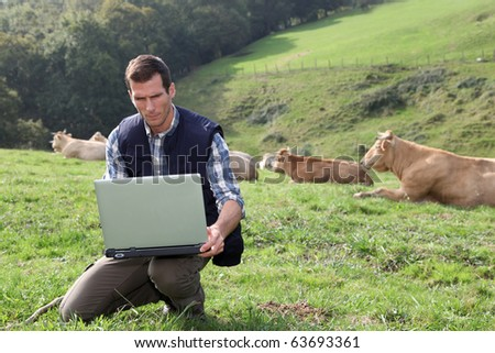 Breeder sitting in cattle field with laptop computer - stock photo