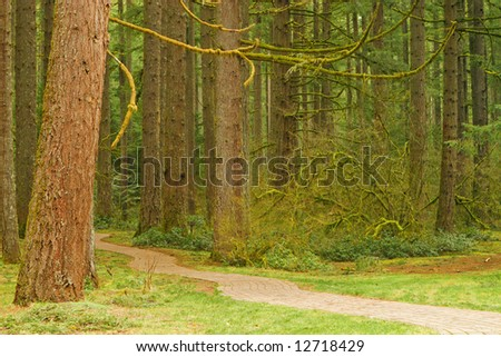 Brick Pathway through the forest at Silver Falls State Park, Oregon, USA - stock photo
