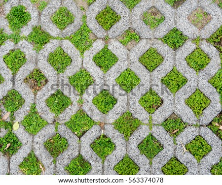 Brick paving interspersed grass stock photo 563374078 for Paving planner