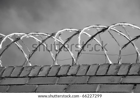 Brick wall with razor wire on it - stock photo