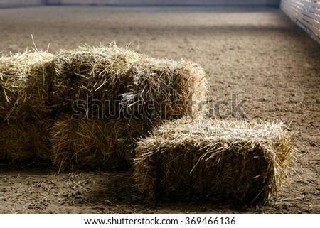 Bricks of fresh hay on a manege for horse dressage - stock photo