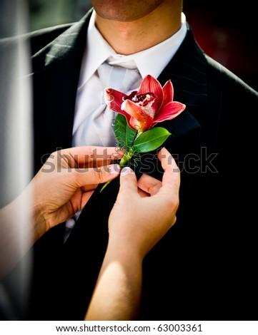 Bride adjusting beautiful groom's boutonniere - stock photo