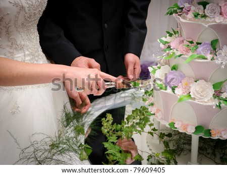 Bride and groom cutting the cake - stock photo