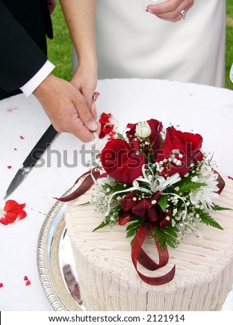 Bride and groom cutting the wedding cake - stock photo