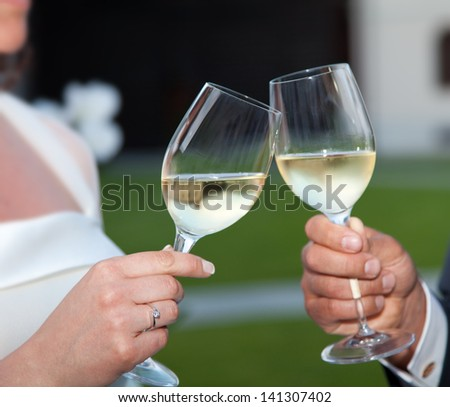 Bride and groom making a toast at sunset. - stock photo