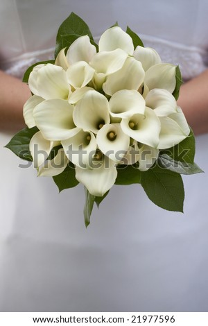 Bride holding bouquet of white calla lilies - stock photo