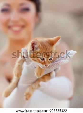 Bride holding ginger kitten in hands - stock photo