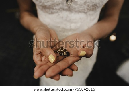 Bride Holds In Her Hands Tiny Butterfly