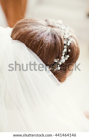 bride in wedding dress and veil - stock photo