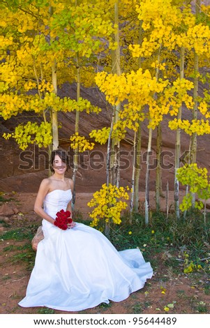 Bride sitting in front of gold aspen leaves - stock photo