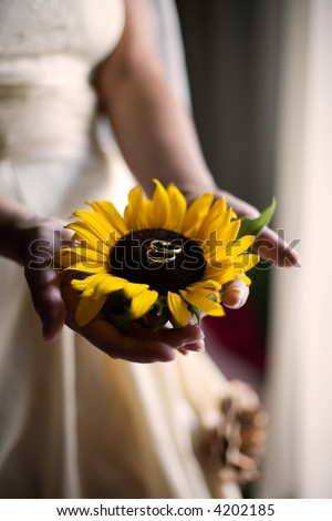 bride, very shallow depth of field for artistic effect, focus on the closer wedding ring - stock photo