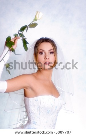 bride with a white rose - stock photo
