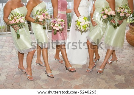 Bride with Bridesmaids - stock photo