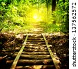 Bridge and footpath in forest in the sunlight - stock photo
