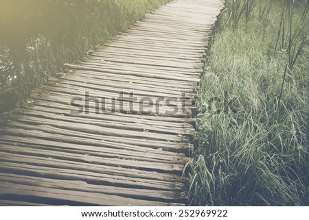 Bridge in Forest in Retro Instagram Style Filter - stock photo