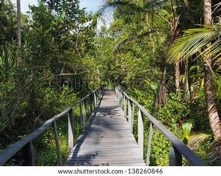 Bridge in the jungle of the national park of Cahuita, Caribbean, Costa Rica - stock photo