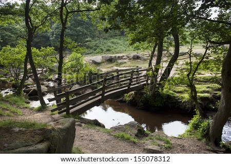 bridge over stream at the edge of a forest - stock photo