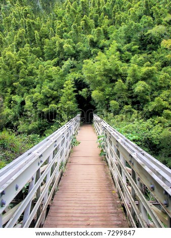 bridge to bamboo abyss - seven sacred pools national park, maui - stock photo