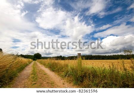 bridleway through an english hay field - stock photo