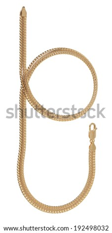 Brigandine chain on white background (isolated)