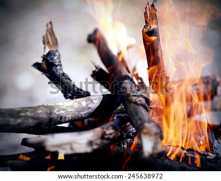 Bright campfire. Fire in marching conditions. - stock photo