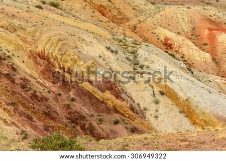 Bright color beautiful abstract natural background of colored rocks with cracks and sparse vegetation
